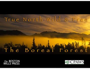 True North Wild and Free