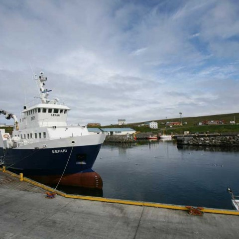 Dalvik Harbour Iceland