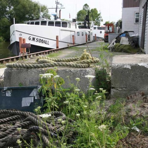 Dunnville Harbour Lake Erie