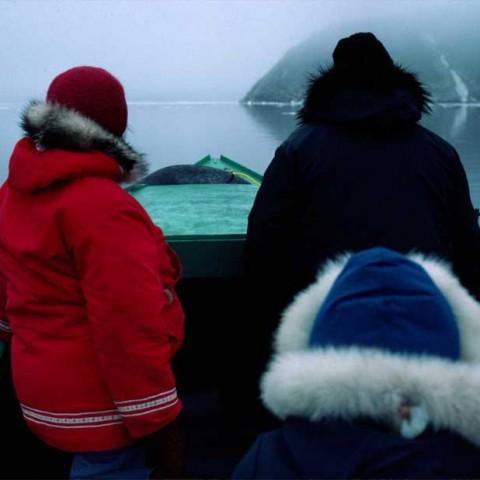 Near Qikiktarjuaq Baffin Island Coast
