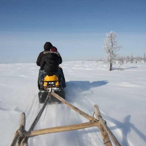 North of Gorno Knyazevsk Siberia