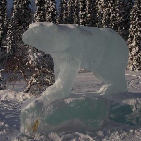 Polar Bear Fairbanks