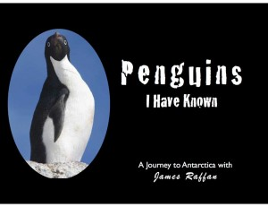Penguins I Have Known