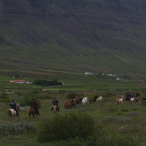 Bolstadarhlid Iceland