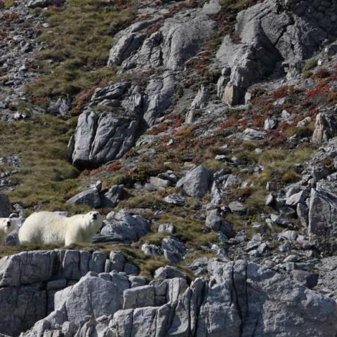 East Baffin Island