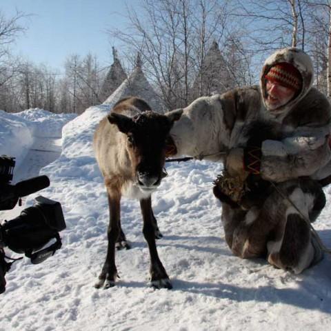 Interviewing Reindeer near Khanty Mansiisk