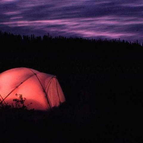 Night Tent Night Sky