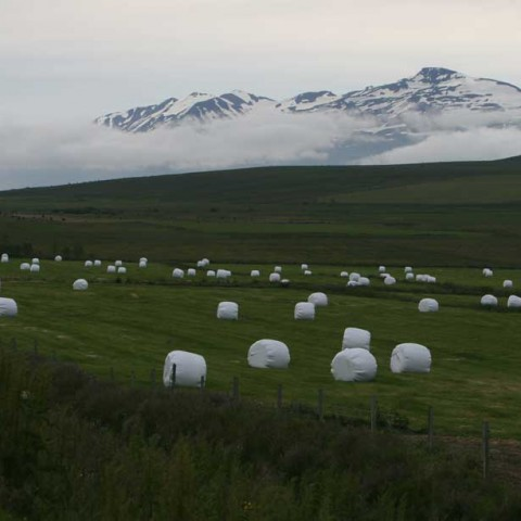Varmahlid-Iceland